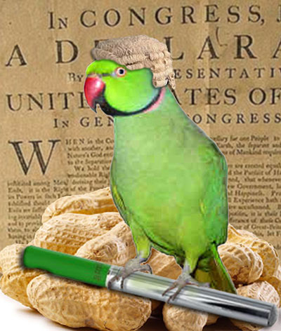 Percy the Parrot Predictions on e-cigarette news